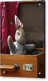 Stuffed Bunny In A Suitcase Acrylic Print