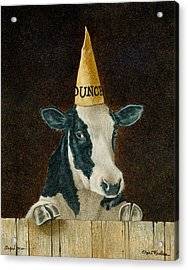 Stupid Cow... Acrylic Print by Will Bullas