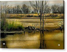 Sublime Banner Part 3 Acrylic Print by Kimberleigh Ladd