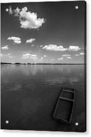 Submerged Acrylic Print by Davorin Mance