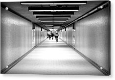 Subterraneans X4 Acrylic Print by Eric Soucy