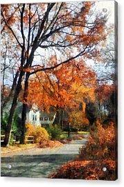 Suburban Street In Autumn Acrylic Print by Susan Savad