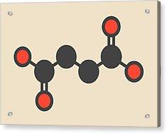 Succinic Acid Molecule Acrylic Print by Molekuul