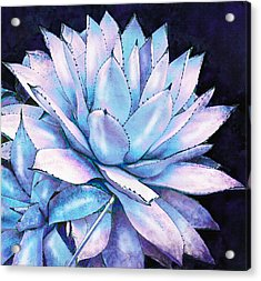 Succulent In Blue And Purple Acrylic Print by Jane Schnetlage