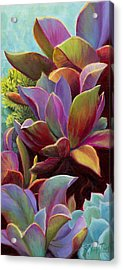 Acrylic Print featuring the painting Succulent Jewels by Sandi Whetzel