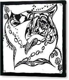 Succulent Stream Of Consciousness Acrylic Print