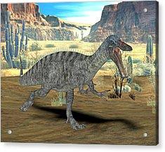 Suchomimus Dinosaur Acrylic Print by Friedrich Saurer
