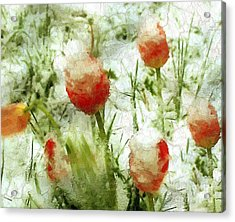 Suddenly Snow Acrylic Print by RC deWinter