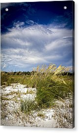 Sugar Sand And Sea Oats Bw Acrylic Print by Marvin Spates