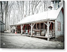 Sugar Shack Acrylic Print by Isabel Poulin