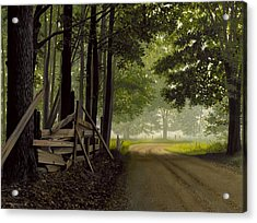 Sugarbush Road Acrylic Print by Michael Swanson