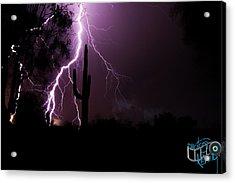 Suguaro Lightning Acrylic Print