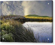 Suisun Marsh Acrylic Print