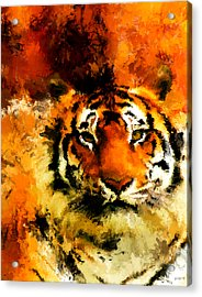Sumatran Acrylic Print by Lourry Legarde