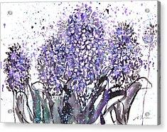 Sumie No.13 Hyacinth Acrylic Print by Sumiyo Toribe