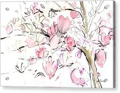 Sumie No.14 Magnolia Acrylic Print by Sumiyo Toribe