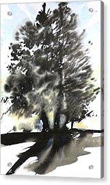 Sumie No.9 Trees Acrylic Print by Sumiyo Toribe