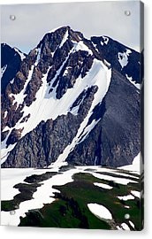 Summer At The Top Of Whistler Acrylic Print by Christine Burdine