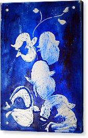 Summer Bloom Acrylic Print by CJ  Rider