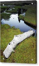 Acrylic Print featuring the photograph Summer Creek by Arthur Fix