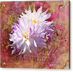 Summer Dahlias Acrylic Print