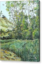 Summer Day Acrylic Print by Elizabeth Crabtree