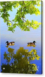 Summer Day On The Lake Acrylic Print by Mariola Bitner