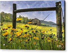 Summer Fields Acrylic Print by Debra and Dave Vanderlaan