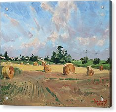 Summer Fields In Georgetown On Acrylic Print
