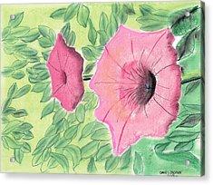 Summer Flowers Acrylic Print by David Jackson