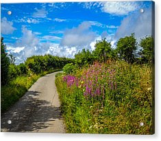 Summer Flowers On Irish Country Road Acrylic Print