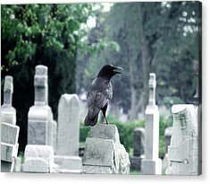 Summer Graveyard Acrylic Print by Gothicrow Images