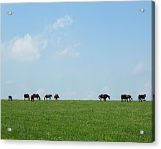 Summer Grazing Acrylic Print by Roger Potts