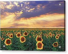 Acrylic Print featuring the photograph Summer Haze by Kadek Susanto