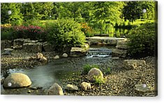 Summer In Forest Park Acrylic Print by Scott Rackers