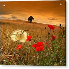 Summer In Ireland. Acrylic Print by Edward Dullard