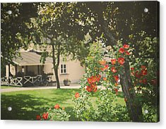 Acrylic Print featuring the photograph Summer In The Park by Ari Salmela
