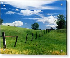 Acrylic Print featuring the photograph Summer Landscape by Steve Karol