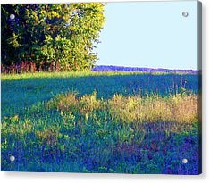 Summer Light Acrylic Print by Shirley Moravec