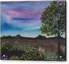 Summer Meadow Acrylic Print by Anastasiya Malakhova