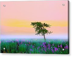 Acrylic Print featuring the photograph Summer Mood by Kadek Susanto