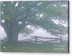 Acrylic Print featuring the photograph Summer Morning Fog by Alan L Graham