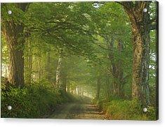 Summer Morning, Cory Hill Road Acrylic Print