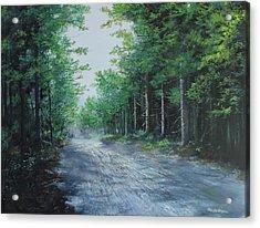 Summer Morning Acrylic Print by Ken Ahlering