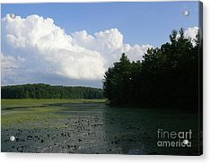 Summer On The Reservoir 2 Acrylic Print by Betsy Cotton