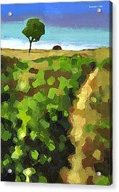 Summer Path Acrylic Print by Douglas Simonson