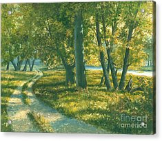 Summer Place Acrylic Print by Michael Swanson