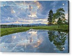 Summer Pond Reflection Acrylic Print