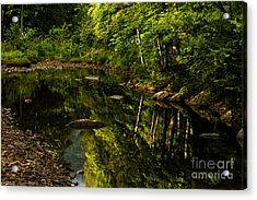 Summer Reflections Acrylic Print by Thomas R Fletcher