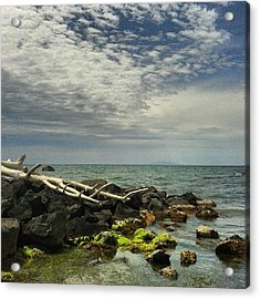 Summer Sea Acrylic Print
